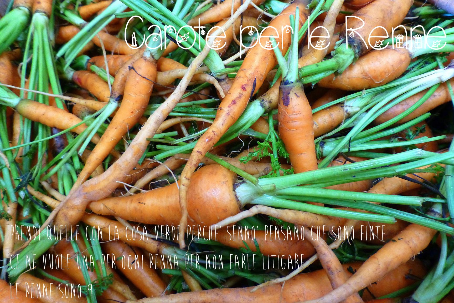carote-per-le-renne-di-babbo-natale